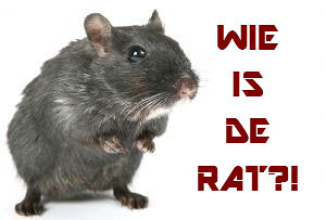 Wie is de rat